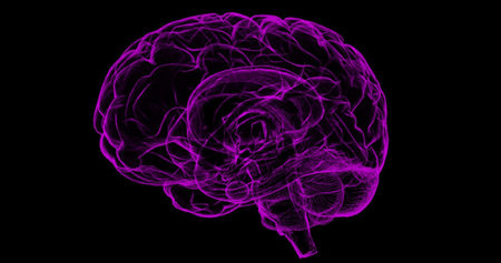 Purple-colored brain on black backrground