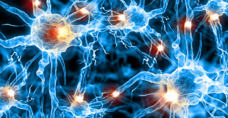 artist rendering of brain neurons